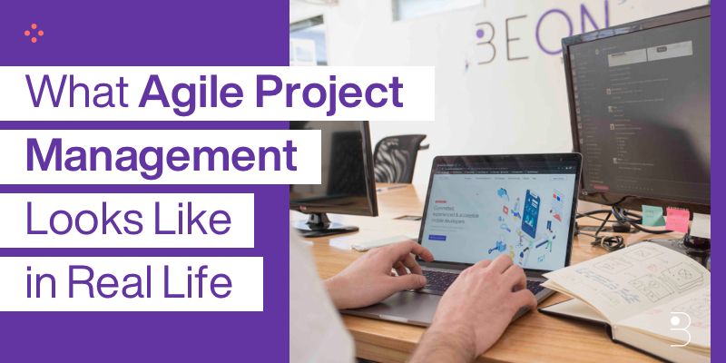 What Agile Project Management Looks Like in Real Life